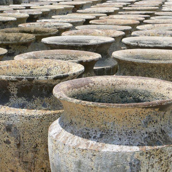 skorpio urn